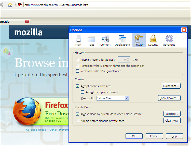 Firefox 3.0.1 Privacy Options