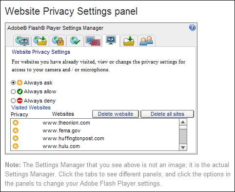 Flash Global Settings - Website Privacy