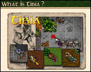 What is Tibia?