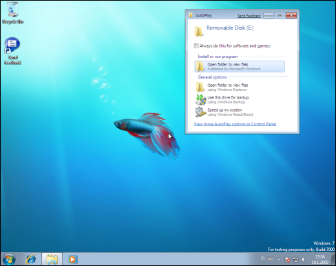 Windows 7, Downadup Autorun.inf