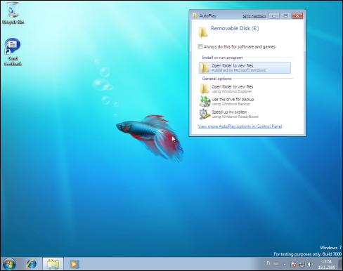 Windows 7, Downadup Autorun.inf