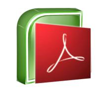 Adobe/Excel