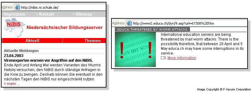 Netsky DDoS sites