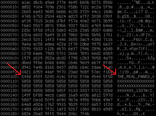 File encrypted by SynoLocker, as viewed in a hex editor
