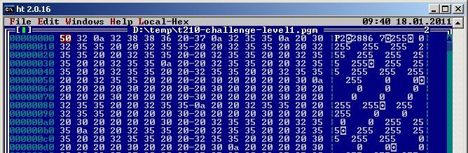 T2 2010 Challenge